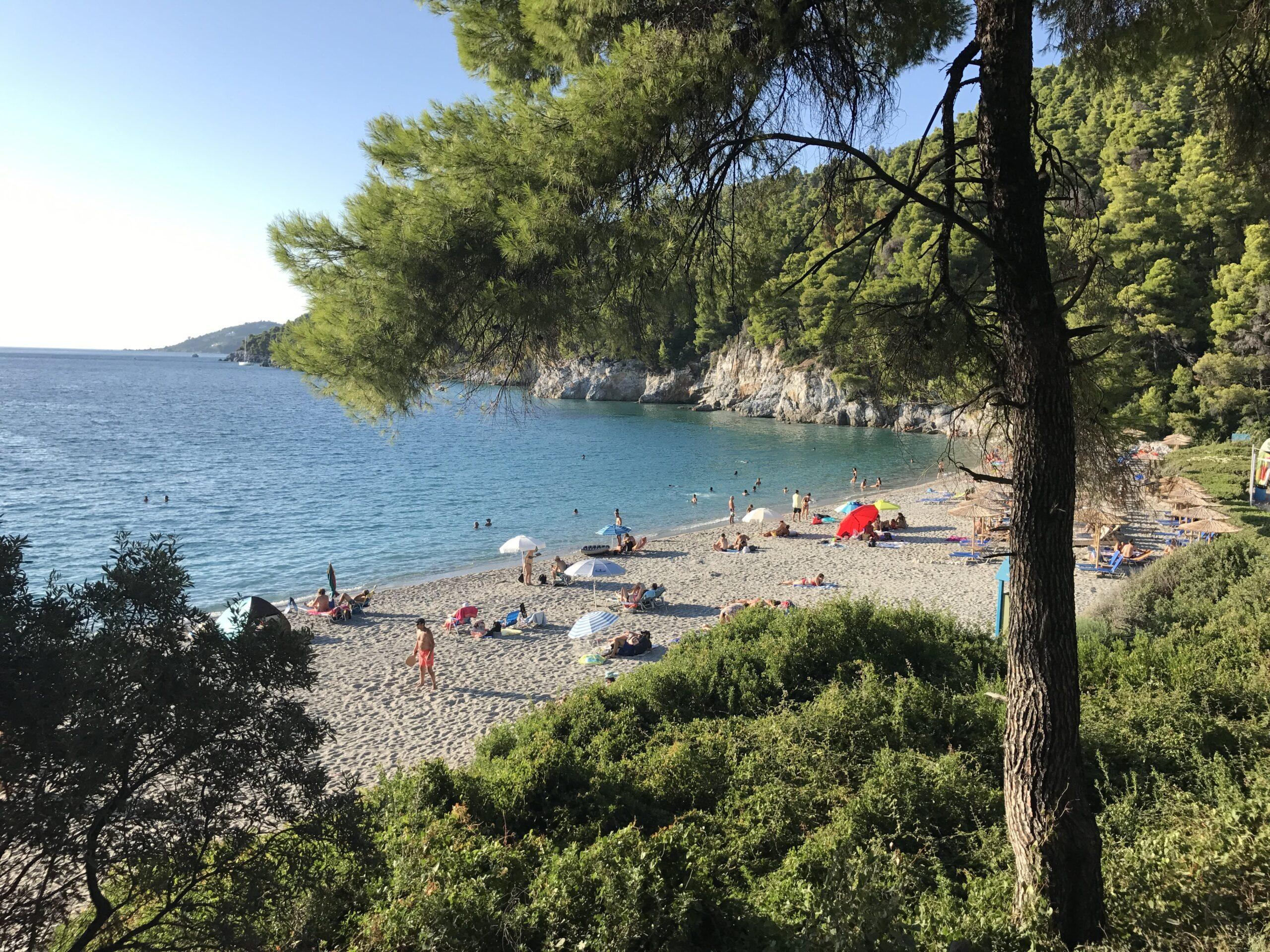 Plaża Kastani Grecja Skopelos